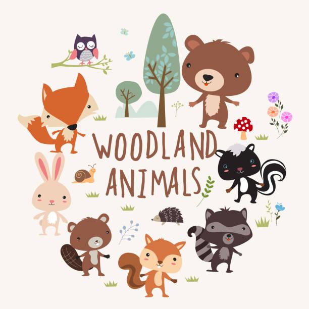 Woodland zwierzęta – artystyczna grafika wektorowa