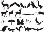 Woodland Creatures Silhouettes
