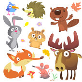 Woodland forest animals birds collection including bird, hedgehog, beaver, bunny rabbit, chipmunk, fox, mouse and moose elk. Autumn leaves and plants. Cartoon vector illustration