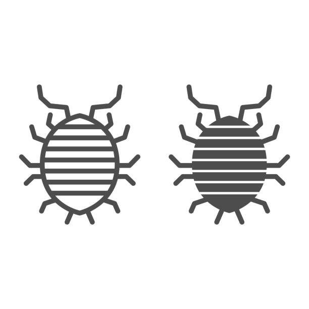 Woodlouse line and solid icon, bugs concept, Roll up bug sign on white background, Sowbug icon in outline style for mobile concept and web design. Vector graphics. Woodlouse line and solid icon, bugs concept, Roll up bug sign on white background, Sowbug icon in outline style for mobile concept and web design. Vector graphics arthropod stock illustrations