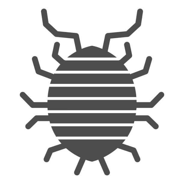 Woodlouse solid icon, bugs concept, Roll up bug sign on white background, Sowbug icon in glyph style for mobile concept and web design. Vector graphics. Woodlouse solid icon, bugs concept, Roll up bug sign on white background, Sowbug icon in glyph style for mobile concept and web design. Vector graphics arthropod stock illustrations