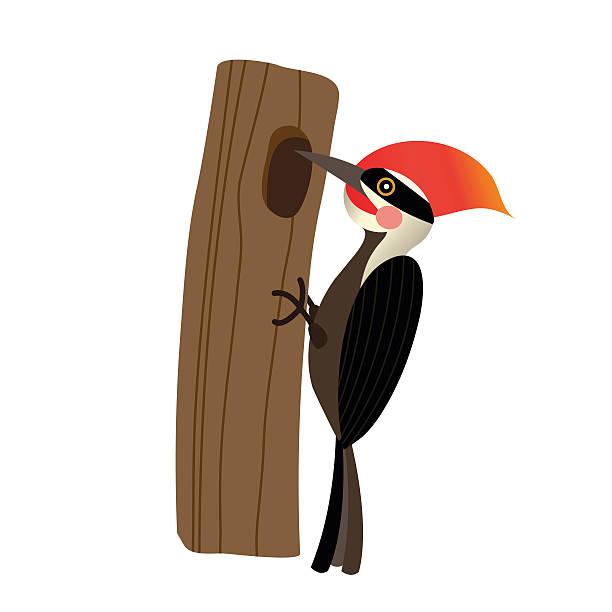 Best Woodpecker Illustrations, Royalty-Free Vector ...