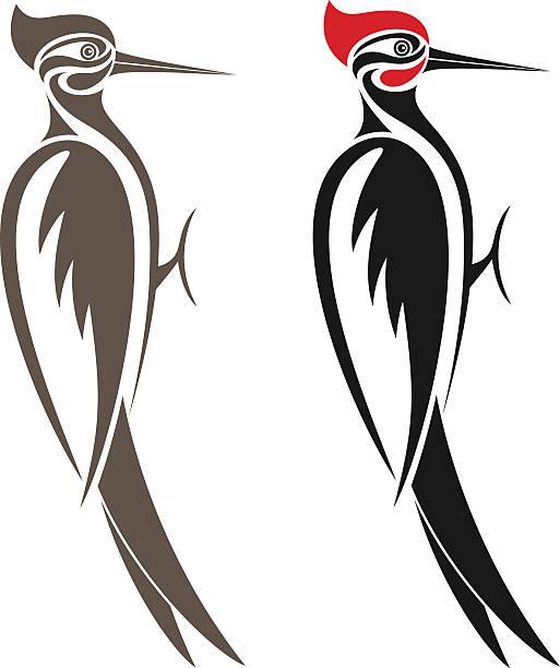 Vectores De Pájaro Carpintero E Ilustraciones Libres De Derechos