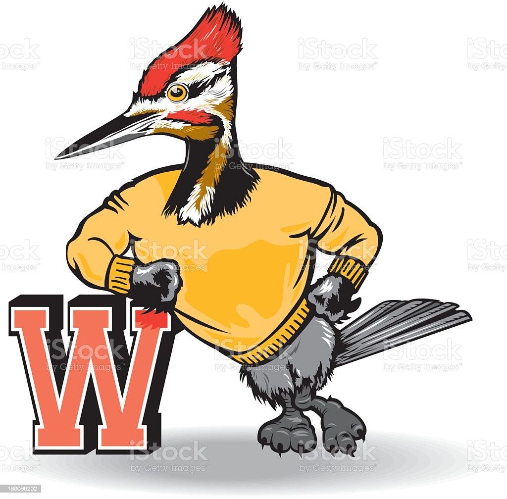 royalty free woodpecker clipart clip art vector images rh istockphoto com downy woodpecker clipart downy woodpecker clipart