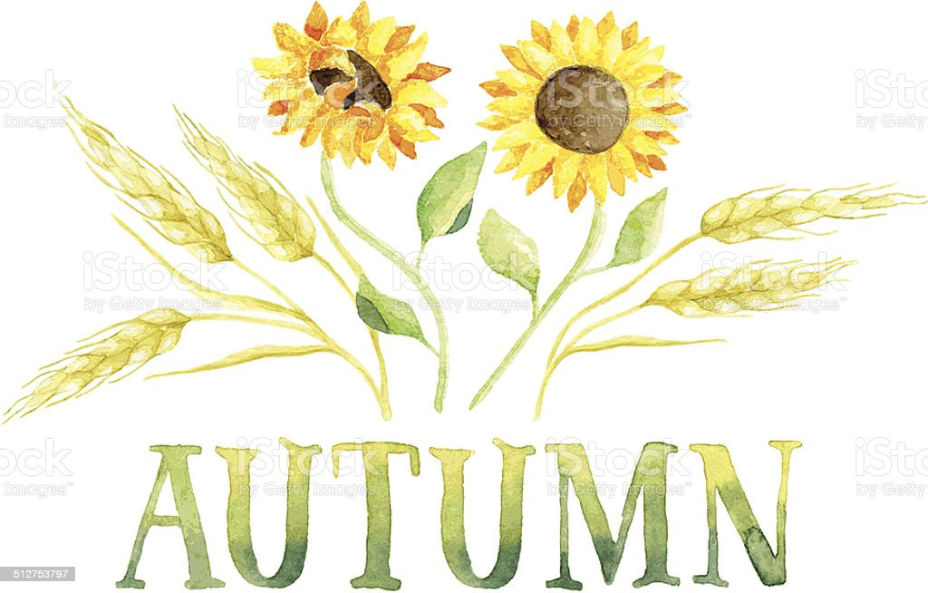 Word Autumn Framed By Wheat And Sunflowers Stock Vector Art & More ...