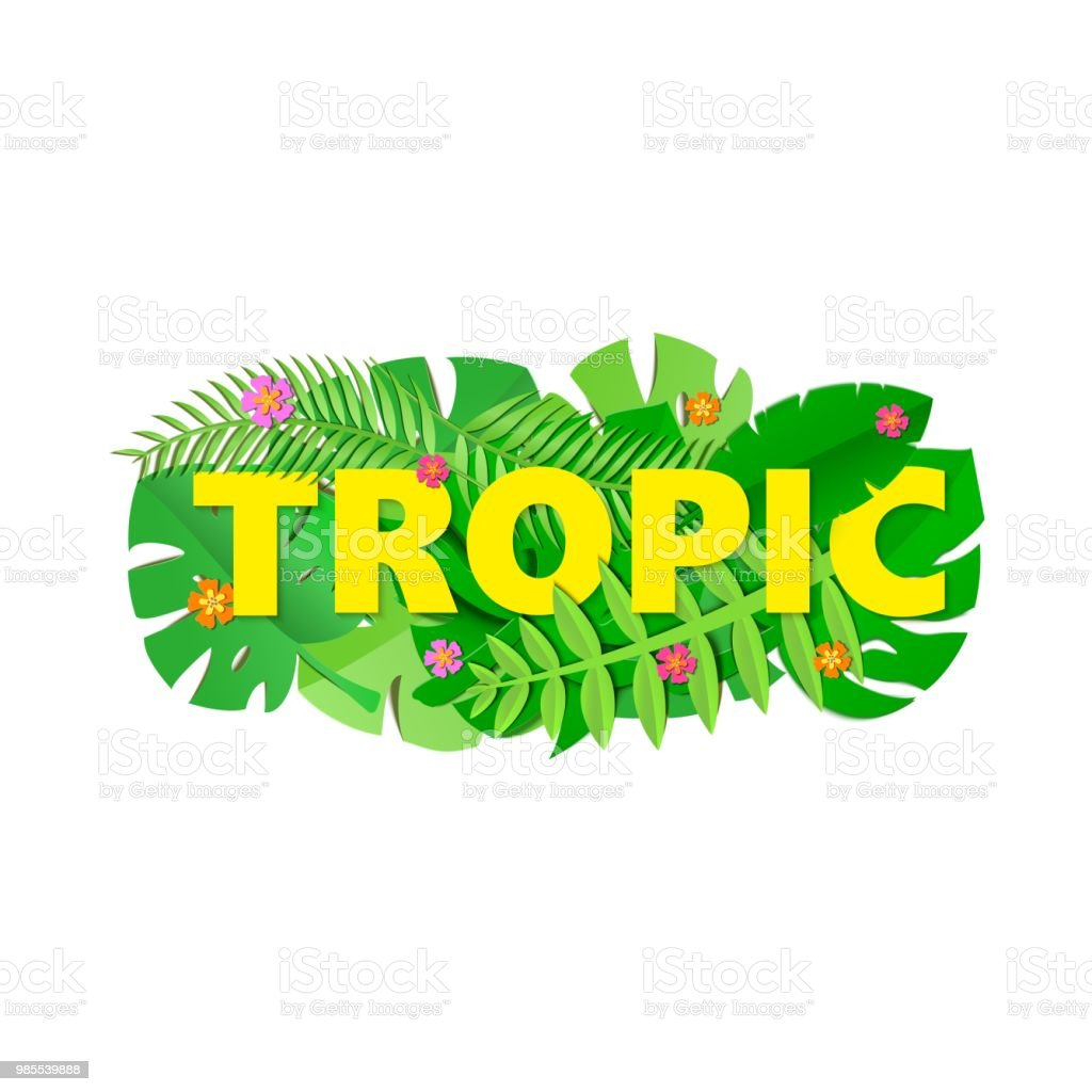 Word Tropic Composition With Green Jungle Leaves And Flowers On
