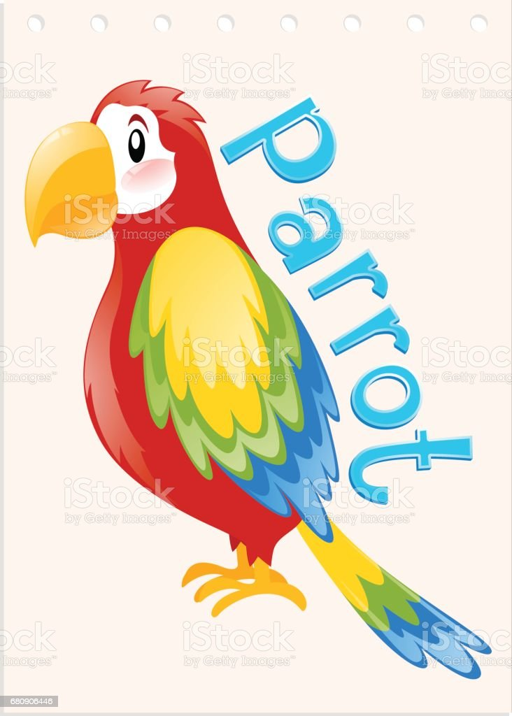 Wordcard with word and picture parrot royalty-free wordcard with word and picture parrot stock vector art & more images of alphabet