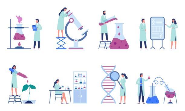 ilustrações de stock, clip art, desenhos animados e ícones de working scientists. professional lab research, chemistry laboratory workers and science researchers flat vector illustration set - scientist
