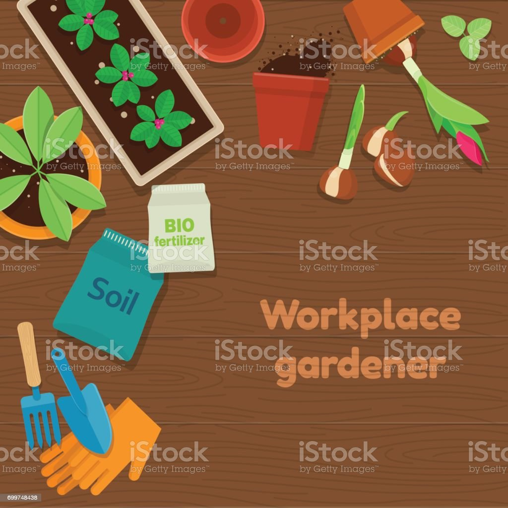 Workplace gardener and gardening tools on wooden background vector art illustration