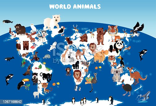 istock World Animals Map 1267168642