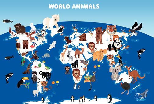 World Animals Map