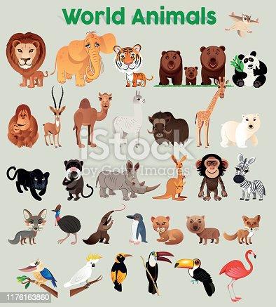 istock World Animals 1176163860
