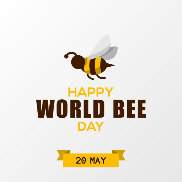 World Bee Day Design Template vector art illustration