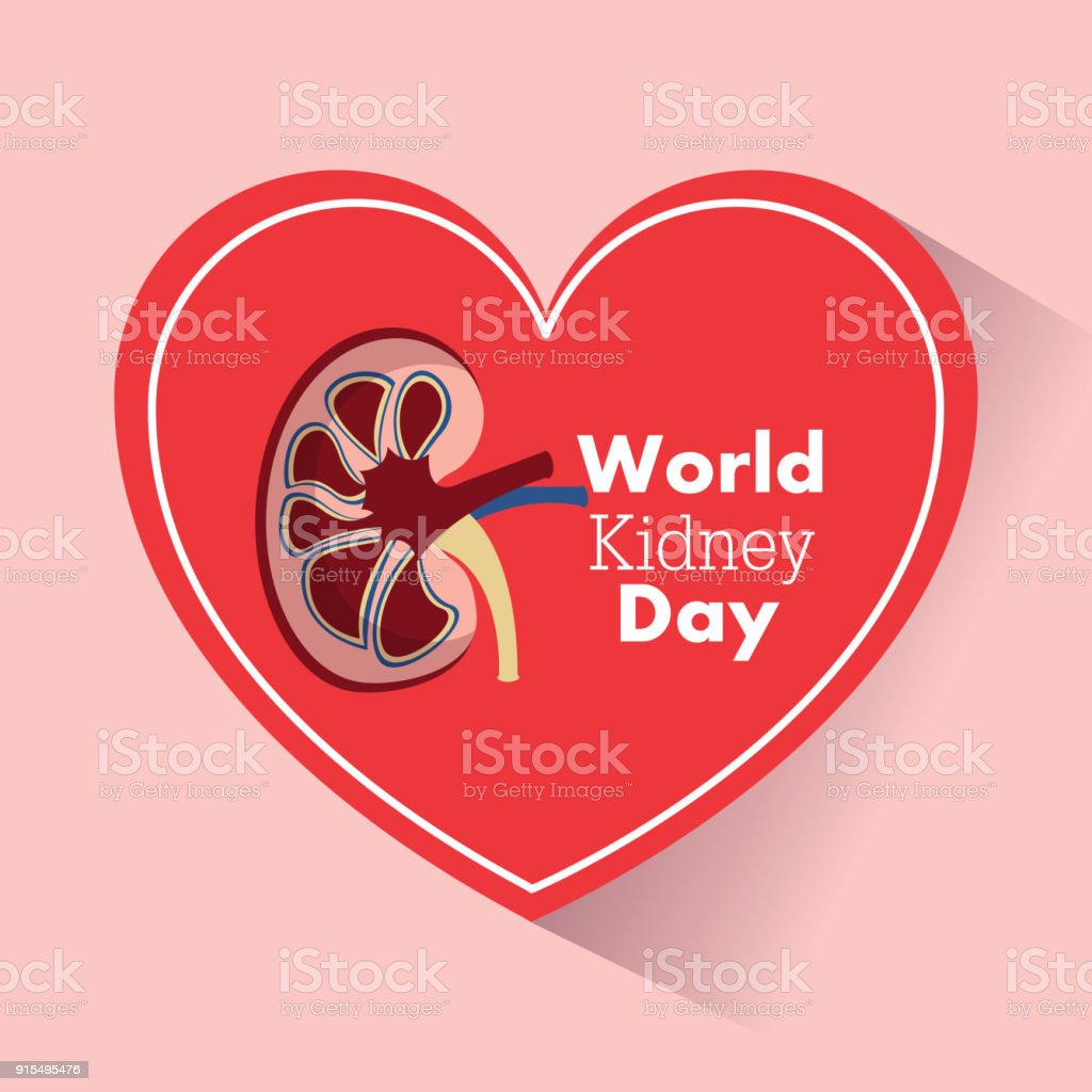 World Kidney Day Heart Support Medical Campaign Stock