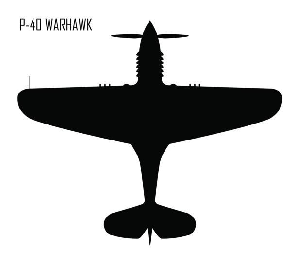 world war ii - curtiss p-40 warhawk - world war ii stock illustrations, clip art, cartoons, & icons