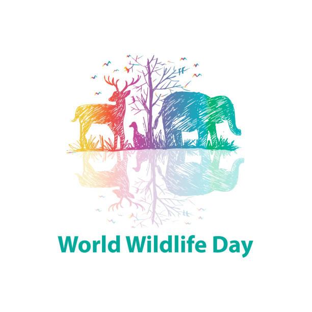 ilustrações, clipart, desenhos animados e ícones de conceito de dia mundial da vida selvagem - calendário de vida selvagem