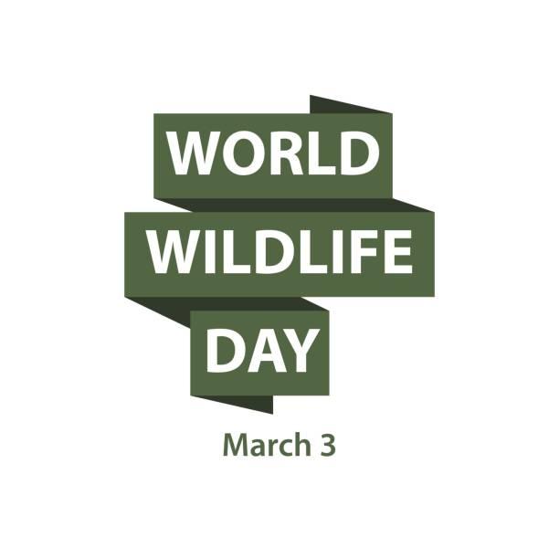ilustrações, clipart, desenhos animados e ícones de dia mundial da vida selvagem de vetor modelo de design - calendário de vida selvagem