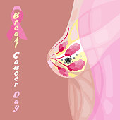 world woman breast cancer day diagram illustration