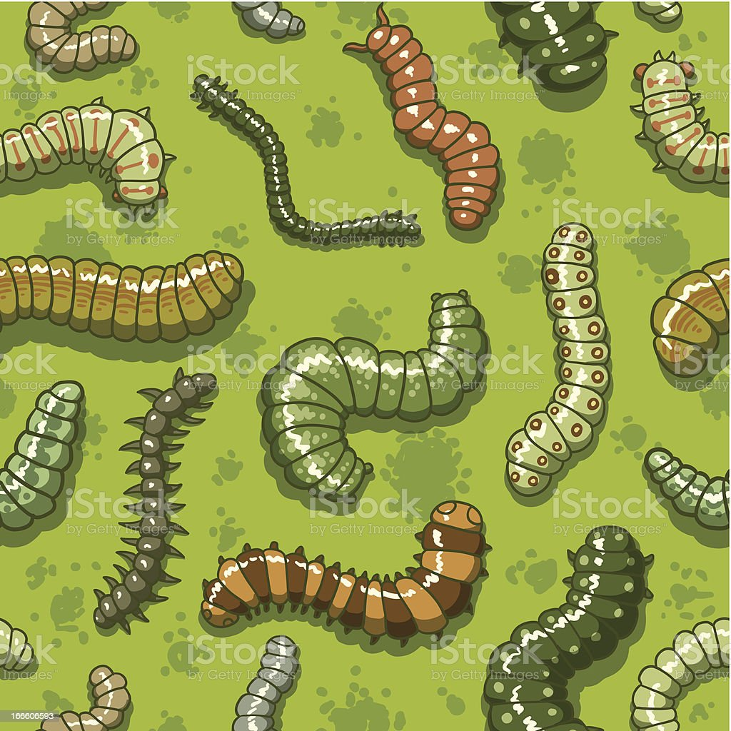 Worms beetles caterpillars seamless pattern vector art illustration