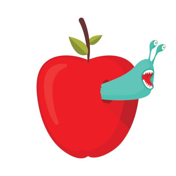 Worms eat red apple. Parasites Pests in fruit Worms eat red apple. Parasites Pests in fruit lagbok stock illustrations