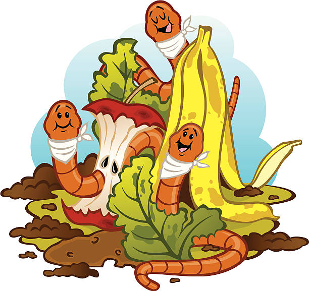 worms eating compost (vermicomposting) - rotten apple stock illustrations, clip art, cartoons, & icons