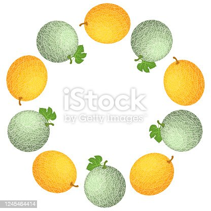 Wreath from cantaloupe and honeydew melons with space for text. Cartoon organic sweet food. Summer fruits for healthy lifestyle. Vector illustration for any design.