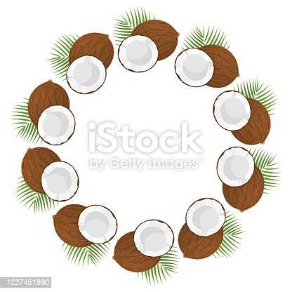 Wreath from whole, half coconut and leaves with space for text. Cartoon organic sweet food. Summer fruits for healthy lifestyle. Vector illustration for any design.