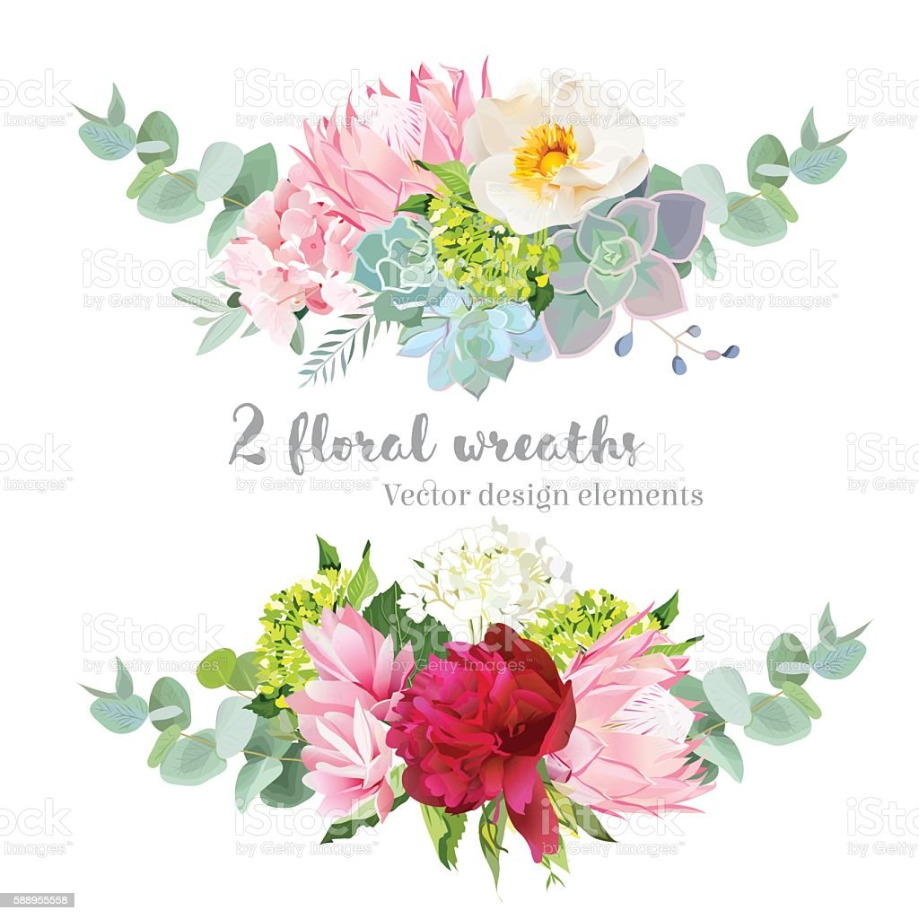 Wreath vector design set. Hydrangea, rose, protea, succulents, echeveria, peony vector art illustration