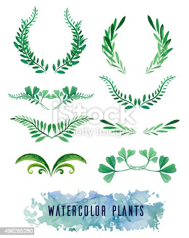 Wreaths and framework of watercolors of plants for your design