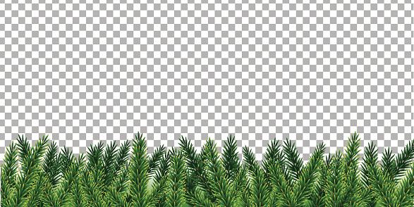 Xmas Tree Branches