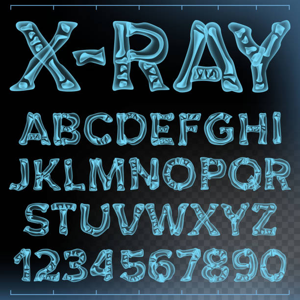 X-ray Font Vector. Transparent Roentgen Alphabet. Radiology 3D Scan. Abc. Blue Bone. Medical Typography. Capitals Letters And Numbers. Isolated Illustration X-ray Font Vector. Transparent Roentgen Decorative Alphabet. Radiology Neon Scan Effect. Blue Bone. Futuristic Medical Light Typography. Capitals Letters And Numbers. Isolated Typeset Illustration radiology stock illustrations