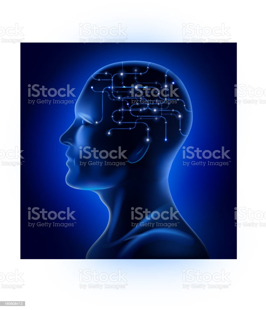 X-ray male facial profile royalty-free stock vector art