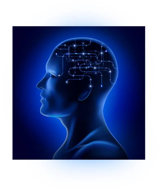 x-ray männliche gesicht profil - kopfleuchten stock-grafiken, -clipart, -cartoons und -symbole