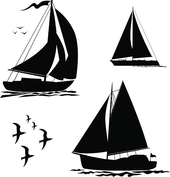 Yacht, sailboats and gull set vector art illustration