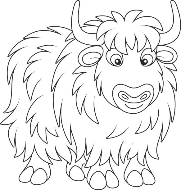 Free Yak Cliparts, Download Free Clip Art, Free Clip Art on Clipart Library