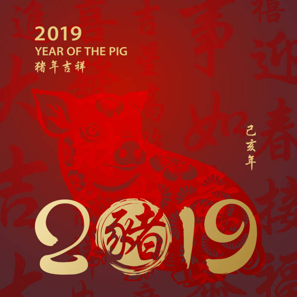 year of the pig 2019 calligraphy - year of the pig stock illustrations, clip art, cartoons, & icons