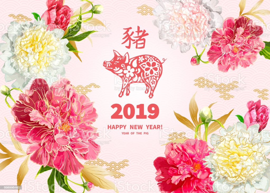 2019 Year of the PIG vector art illustration
