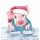 Beautiful vector watercolor pig swine in christmas hat with scarf symbol of 2019 year
