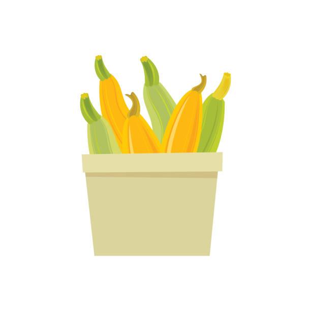Yellow and Green Zucchini icon vector art illustration