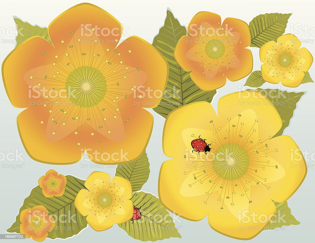 Yellow and Orange Flowers, Leaves, Ladybug Design royalty-free yellow and orange flowers leaves ladybug design stock vector art & more images of floral pattern