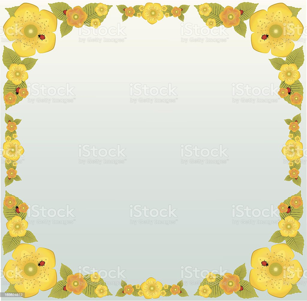 Yellow And Orange Flowers Leaves Ladybugs Border Design Stock