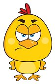 Yellow Angry Chick