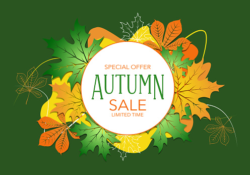 Yellow autumn background with maple leaves. Vector floral green background. Web sale banner or flyer template.