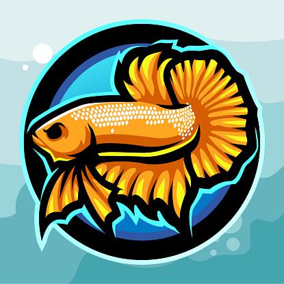Yellow betta fish mascot. esport logo design