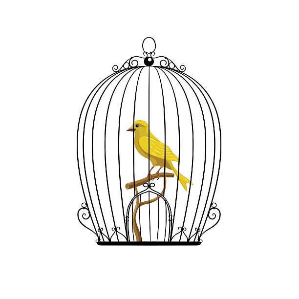 illustrations, cliparts, dessins animés et icônes de jaune dans une cage d'oiseau noir - dessin cage a oiseaux