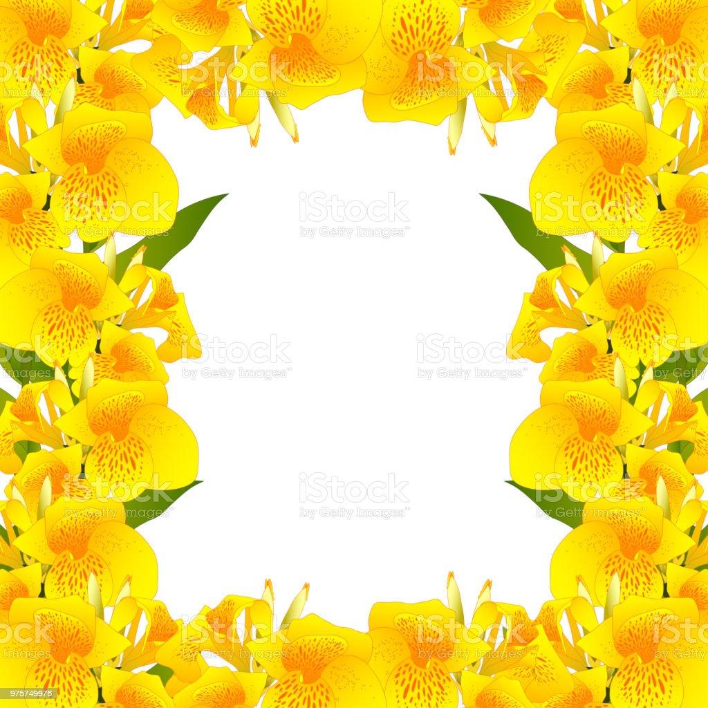 Gelbe Canna Lilie Border2 - Lizenzfrei Ast - Pflanzenbestandteil Vektorgrafik