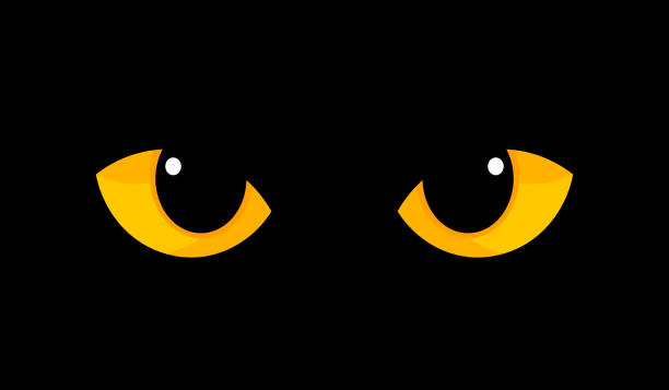 Yellow cat eyes in darkness Yellow cat eyes in darkness. Halloween vector illustration. halloween cat stock illustrations