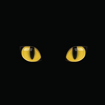 Yellow Cat Eyes Stock Illustration - Download Image Now ... (416 x 416 Pixel)