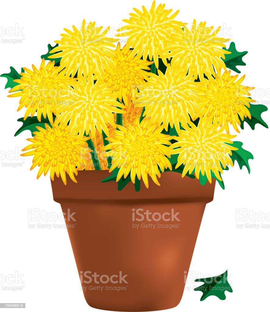 Peace Lily Clip Art Royalty Free Garden Mu...