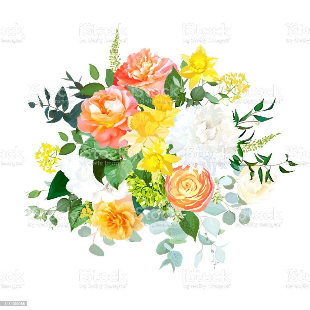 Yellow Daffodils Orange Ranunculus Coral Rose White Hydrangea And Chrysanthemum Stock Illustration Download Image Now Istock